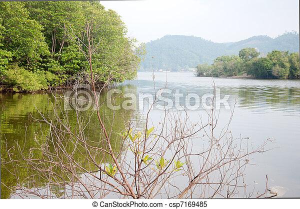 tree and lake - csp7169485