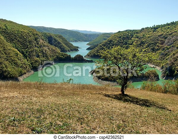 Tree and lake - csp42362521