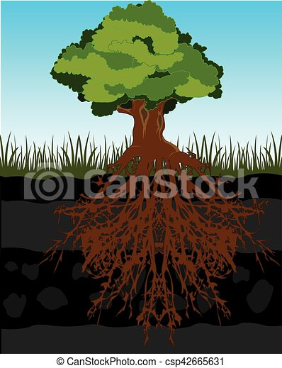 how to cut tree roots in the ground