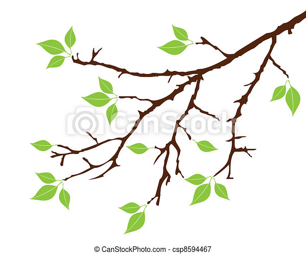 vector tree branch with leaves vectors illustration search clipart rh canstockphoto com tree branch vector branch vector
