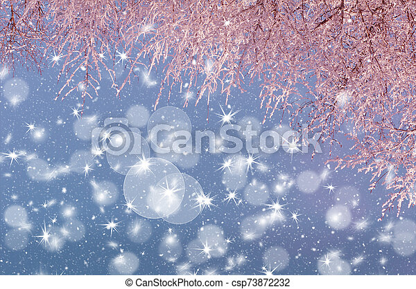 tree branches in hoarfrost illuminated by pink light against the sky - csp73872232