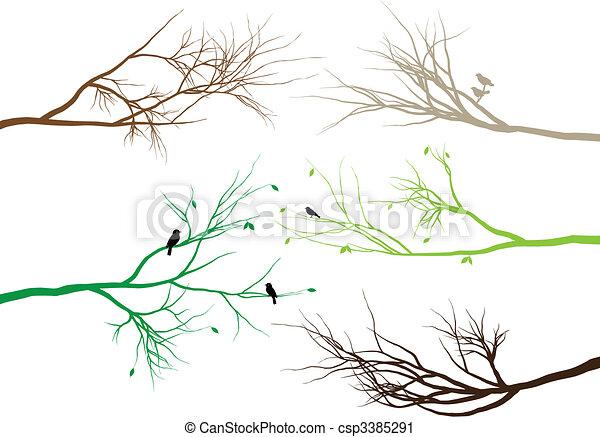 tree branches - csp3385291