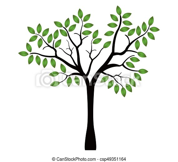 tree - csp49351164