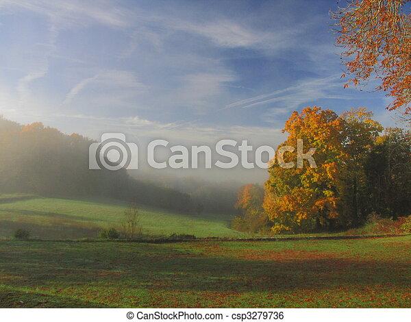 Tree, Countryside, sunray, sunlight, fog - csp3279736