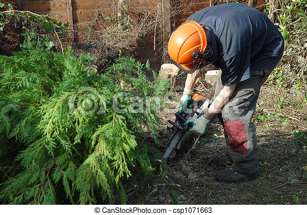 tree cutting - csp1071663