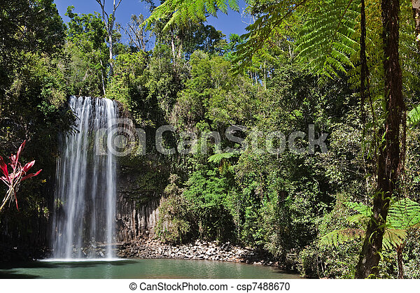 tree fern and waterfall in tropical rain forest paradise - csp7488670