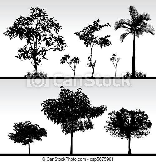 Tree Grass Silhouette - csp5675961