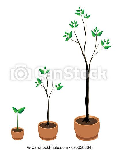 Tree Growth Vector - csp8388847