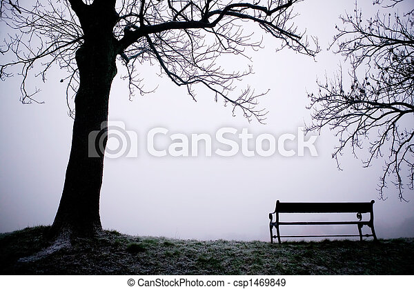 Tree in Fog - csp1469849
