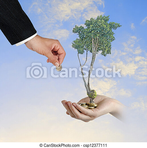 tree in hand - csp12377111
