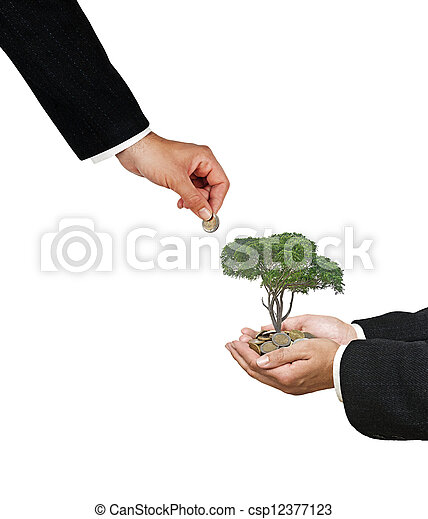 tree in hand - csp12377123