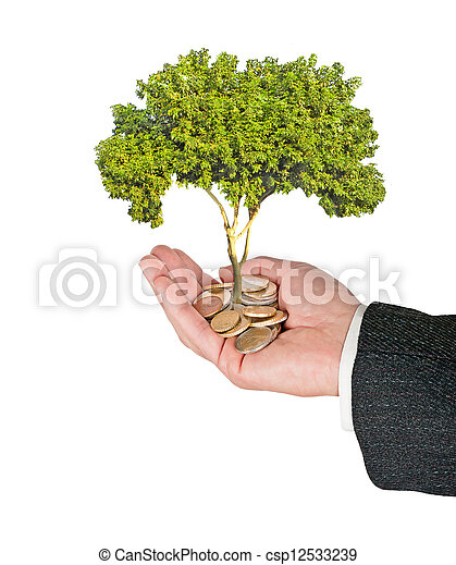 tree in hand - csp12533239