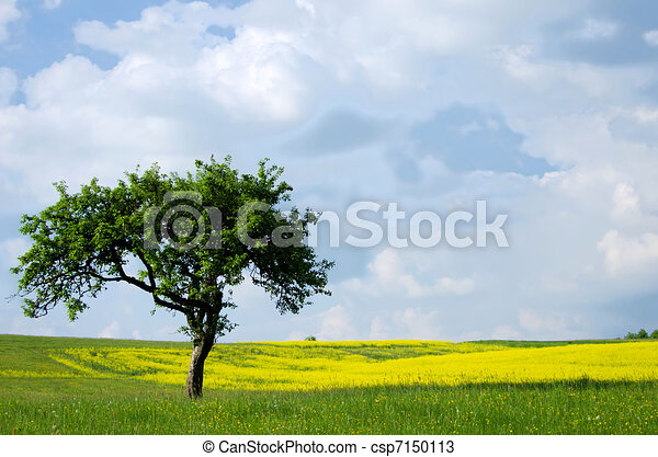 Tree in the grassland drawings search clipart illustration and tree in the grassland stock illustration voltagebd Choice Image