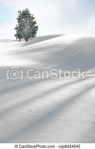 Tree in winter - csp8424545