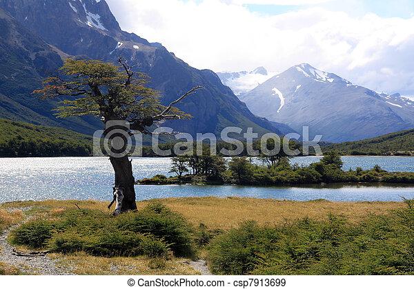 Tree, lake, mountain - csp7913699