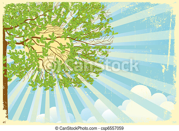 Tree landscape with sun rays and clouds - csp6557059
