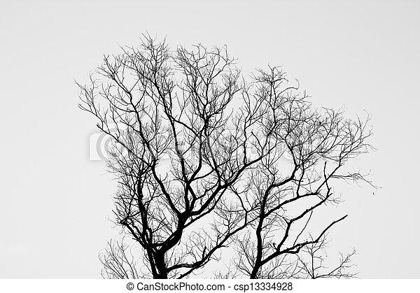 Tree of death. - csp13334928