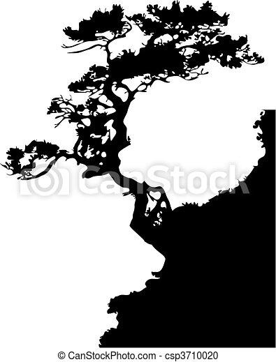 Tree on a rock - csp3710020