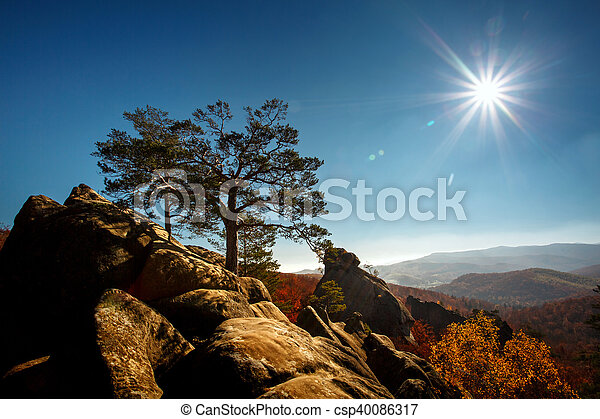 tree on a top mountain under blue sky in sunny day - csp40086317