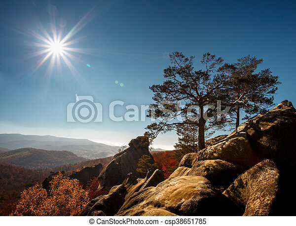 tree on a top mountain under blue sky in sunny day - csp38651785