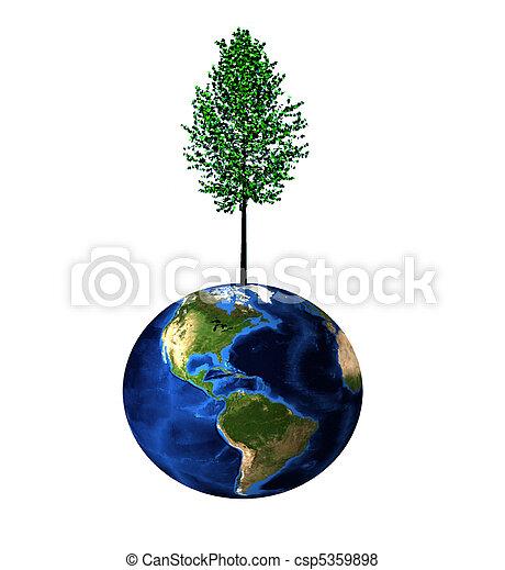 Tree on Earth - csp5359898