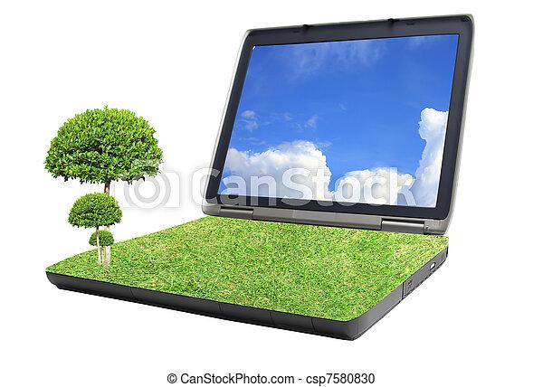 tree on grass laptop - csp7580830