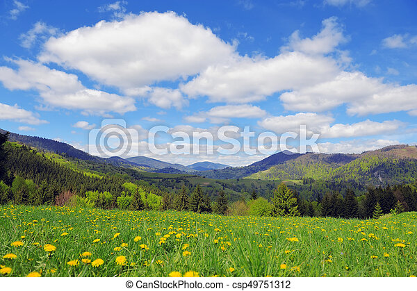 Tree on the background of the mountains - csp49751312