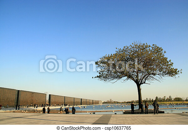 tree on the edge of a square - csp10637765