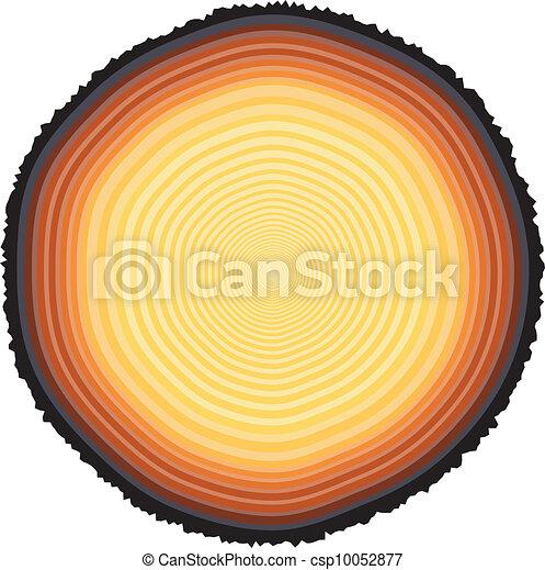 Tree rings - csp10052877