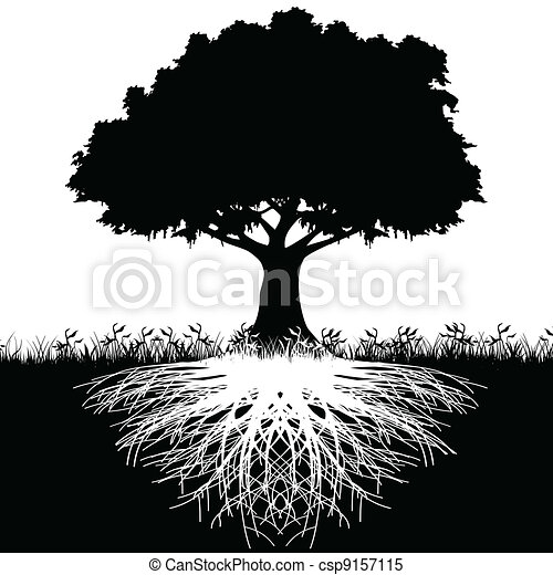Tree roots silhouette - csp9157115