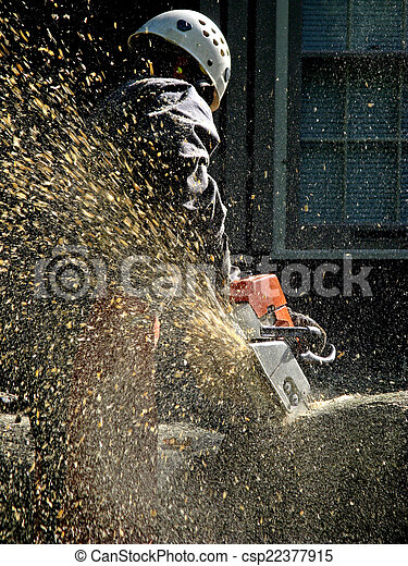 Tree service worker.  A shower of wood chips sprays from the chainsaw as it bites into the log. - csp22377915