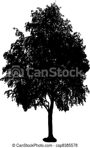 tree silhouette - csp8385578
