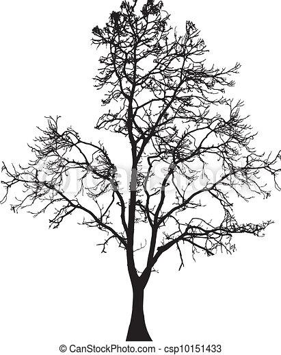 Tree Silhouette  - csp10151433