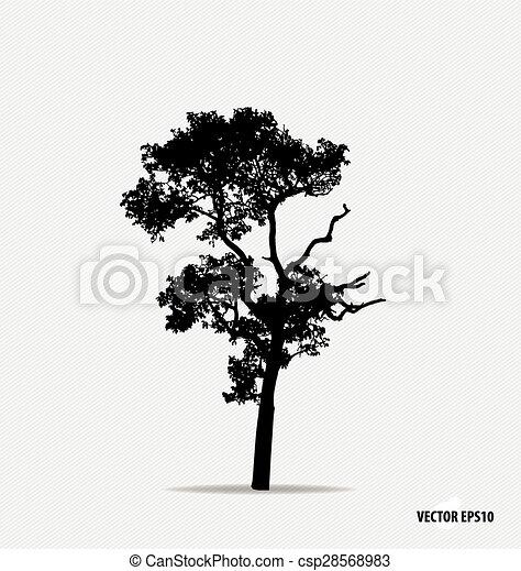 Tree silhouette. Vector illustration. - csp28568983
