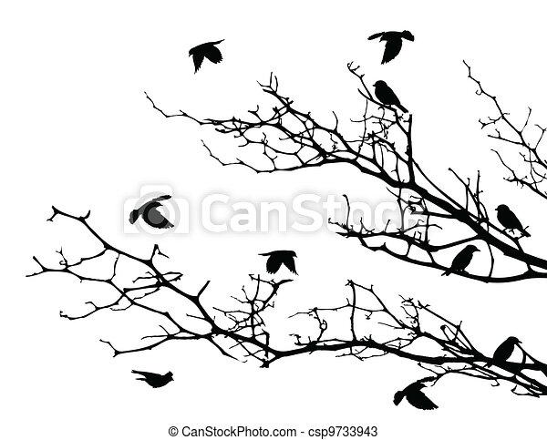 tree silhouette with birds - csp9733943