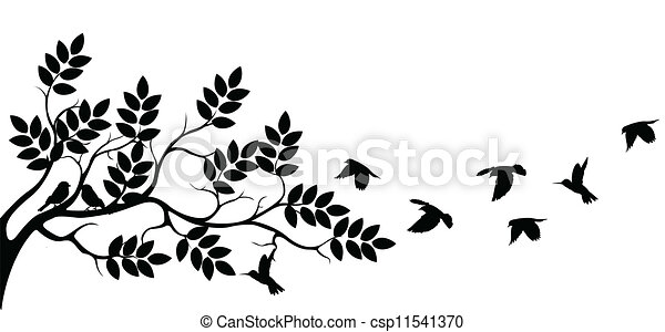 tree silhouette with birds flying - csp11541370