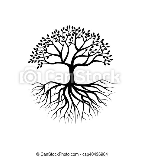 Tree silhouette with root - csp40436964