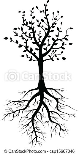 tree silhouette with roots - csp15667046