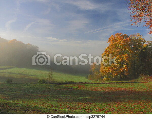 Tree, sunbeam, sunray, landscape, fog - csp3279744