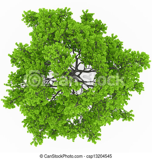 tree top view free vector artwork for swimmer free vector artwork for screen printing
