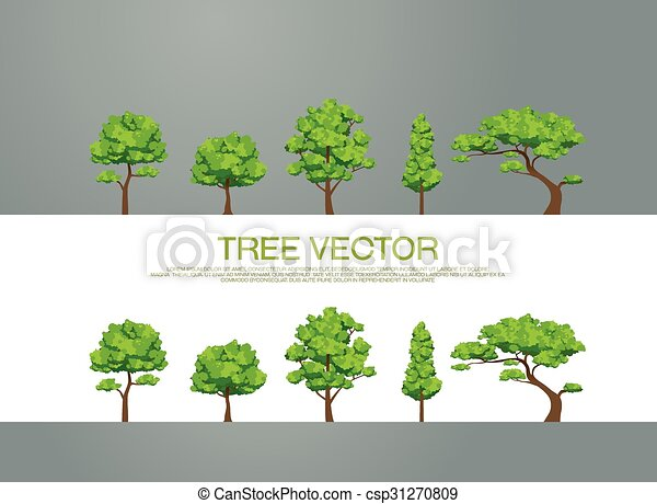 tree - csp31270809