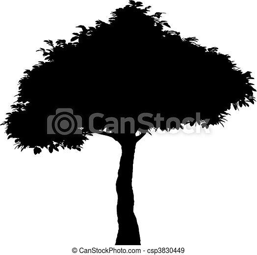 Tree (vector) - csp3830449