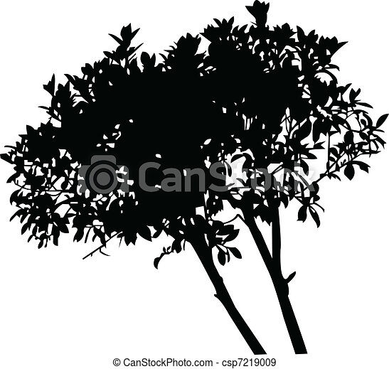 tree - vector - csp7219009