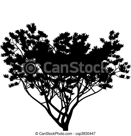 Tree (vector) - csp3830447