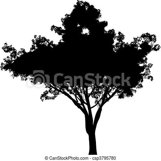 Tree (vector) - csp3795780