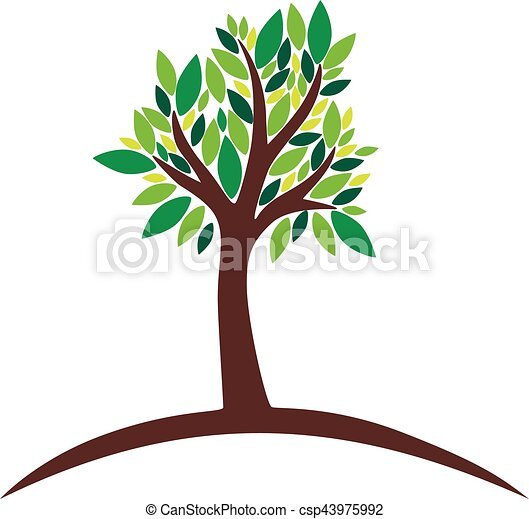 Tree with green leaves on white background, vector illustration - csp43975992
