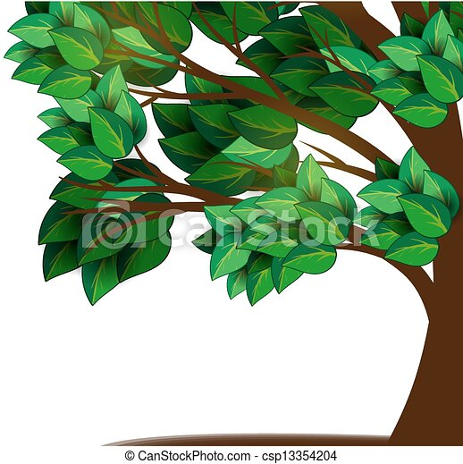 Tree with green leaves - csp13354204