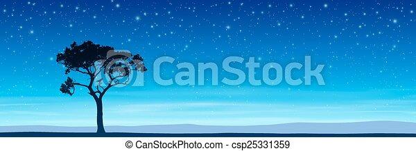 Tree with Night Sky - csp25331359