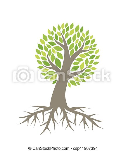 Tree with roots vector - csp41907394