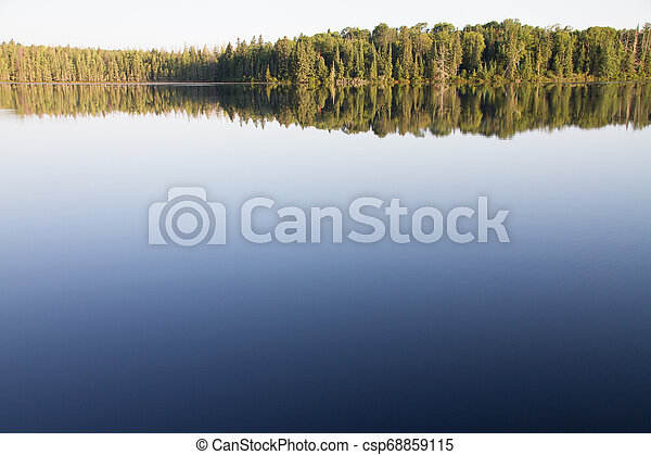 Trees and Clear Sky Reflected in Still Water - csp68859115